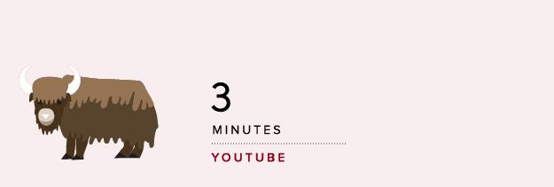 ideale-lengte-youtube-bericht